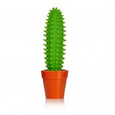 Kaktus Olovka