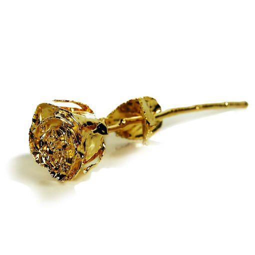 Zlatna Ruža-Black Box