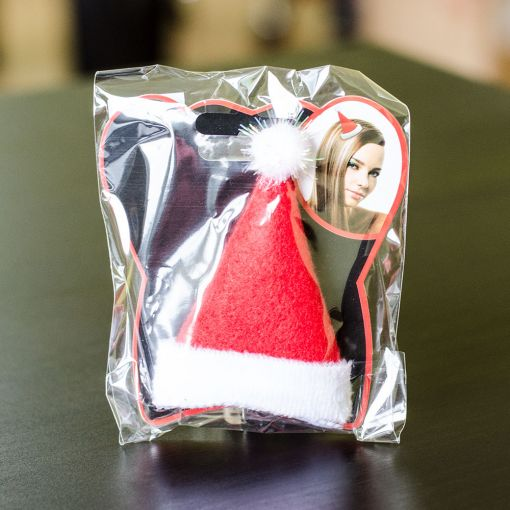 Deda Mraz Šnala