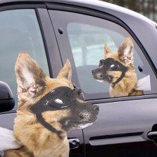 Provozaj Psa - Nalepnica