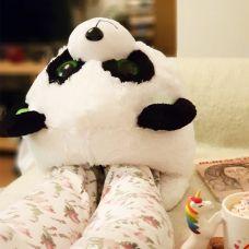 Papuča Panda