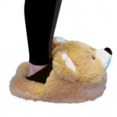 Papuča Meda