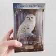 Hedwiga Magična Stvorenja Statua